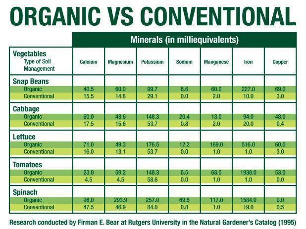 Organic food vs conventional food essay