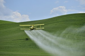 Biplane Crop Duster spraying a farm field.